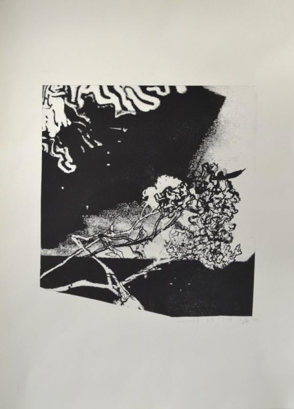 "Изабел Иванова, специалност ""Изобразително изкуство"",Огледално, 2017 /  Isabella Ivanova, degree programme ""Fine Arts"", Mirrorlike, 2017"
