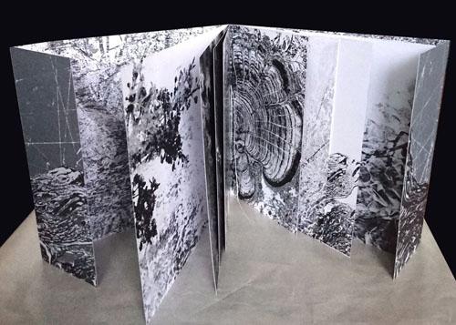 Калина Миланова, Kнига, 2018 / Kalina Milanova, Book, 2018